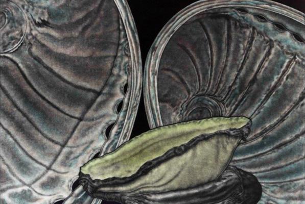 В День города художники из 35-и стран мира представят екатеринбржцам гравюры меццо-тинто