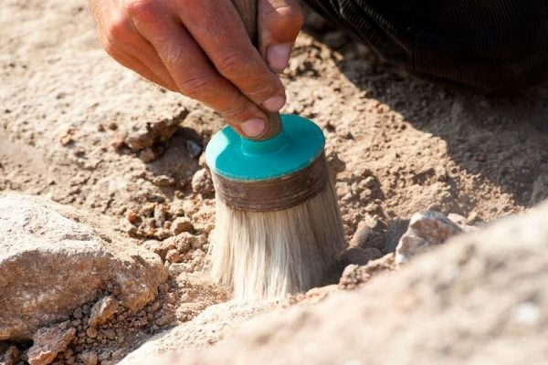 Французские археологи нашли древнейший в Европе фрагмент останков человека