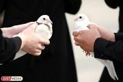 Свердловский Россельхознадзор запретил ввоз птицы из Великобритании