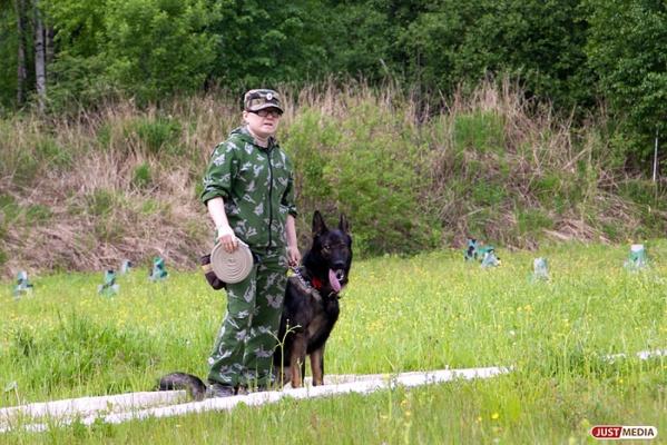 В Верхотурье сотрудники ИК-53 с собаками смогли отыскать трех заблудившихся  грибников