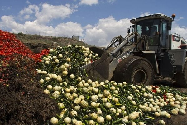 Власти РФ разрешили уничтожать санкционные продукты «любым доступным способом»