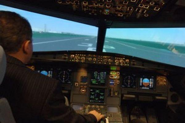 В Швеции пилот самолета усмирил дебошира при помощи топора