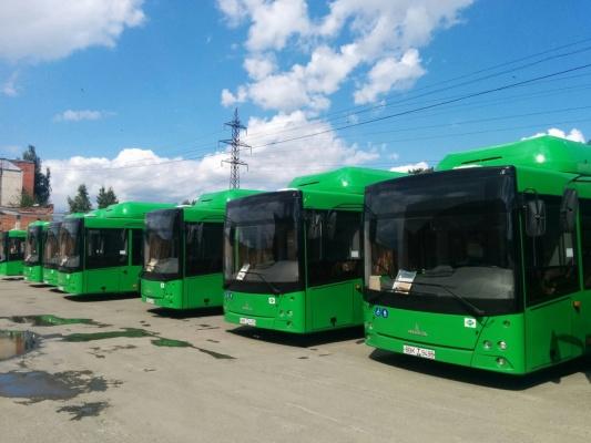 «Наполовину из немецких деталей». В Екатеринбург прибыла первая партия автобусов из Белоруссии