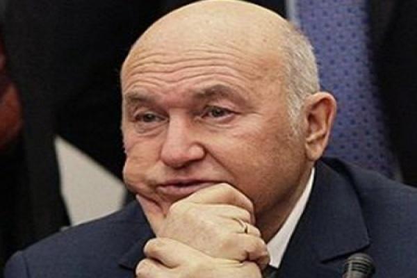 Бывший мэр Москвы предложил делать из санкционных продуктов электричество