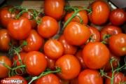 Цены на овощи в Свердловской области пошли на спад