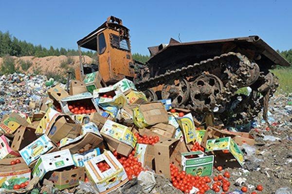 В Госдуме внесен законопроект о передаче санкционной еды нуждающимся слоям населения