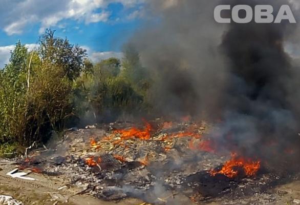На Большом Конном полуострове горит свалка