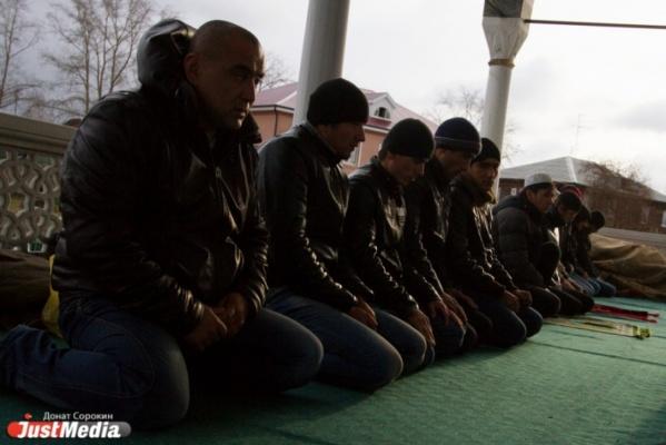Екатеринбуржцы смогут обучаться татарскому языку в отделении Казанского университета