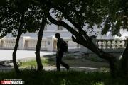 Французы предложили разделить новый парк у Дворца молодежи на пять функциональных зон. ЭСКИЗ