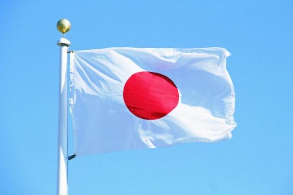 Правительство Японии отложило визит министра иностранных дел в Россию