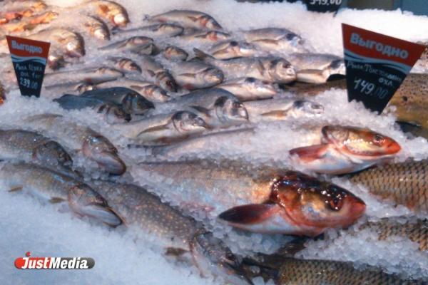 В Свердловской области увеличилось число бракованной рыбной продукции