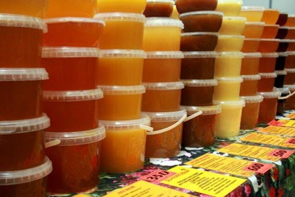 Пчеловоды попросили главу Минсельхоза Ткачёва ограничить закупку импортных сладостей