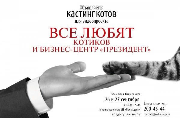 В Екатеринбурге объявлен кастинг котов-бизнесменов