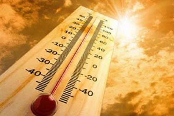 Минувшее лето стало самым жарким на планете за последние 125 лет