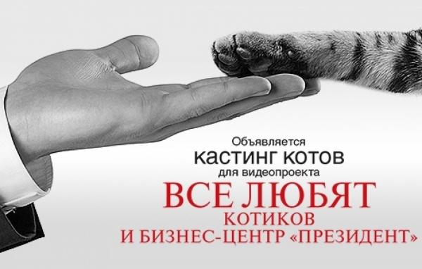 В Екатеринбурге более пятидесяти котов претендуют на должность арендатора многоэтажного бизнес-центра