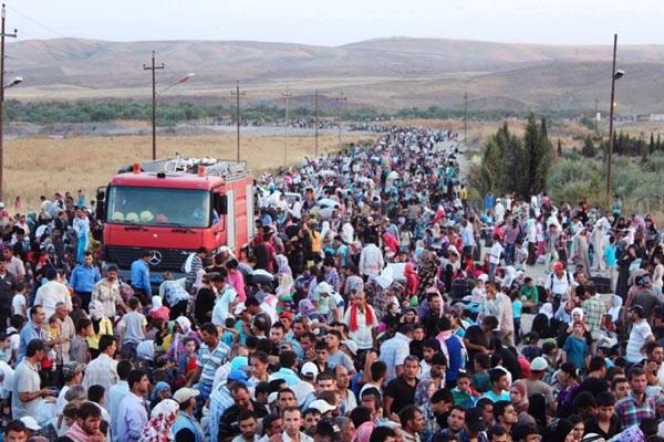 Беженцы начали переходить из Сербии в Хорватию