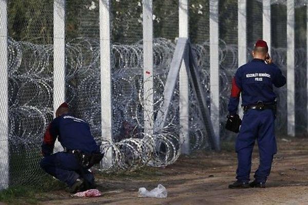 Венгрия начала строить стену на границе с Хорватией