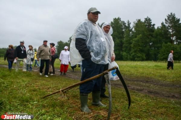 Дожди и заморозки угрожают окончательно уничтожить урожай в Свердловской области