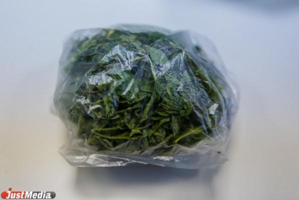 В Серове у местного жителя изъято больше 4 килограммов маковой соломы