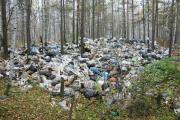 Первоуральск утопает в свалках. Свердловский депутат призывает на помощь прокуратуру