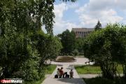 «Зеленая» пешеходная зона и парк: голландские архитекторы разработали концепцию общественных пространств на улице Челюскинцев