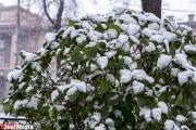 Сильные дожди со снегом и шквалистый ветер. Свердловское МЧС объявило штормовое предупреждение