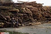 В Тугулыме сгорел деревообрабатывающий цех