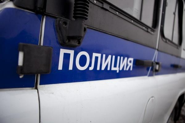 Неизвестные обстреляли полицейский автомобиль в Петербурге