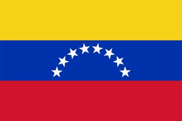 В Венесуэле оппозиция официально получила конституционное большинство
