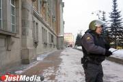 В Екатеринбурге на 19% снизилось количество уличных грабежей