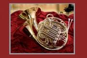 Оркестру театра оперы и балета подарили пять валторн