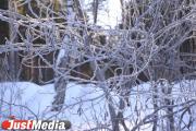 Спасатели продолжают поиск тела туриста, погибшего вблизи перевала Дятлова