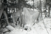 Замерзший на перевале Дятлова мужчина оказался отшельником, находившимся в розыске