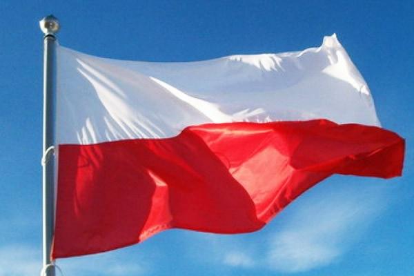 В российском МИДе заявили об осквернении в Польше советского памятника