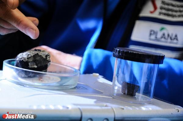 Вершина Гроховского и 30 килограммов находок. Антарктическая метеоритная экспедиция вернулась на Урал