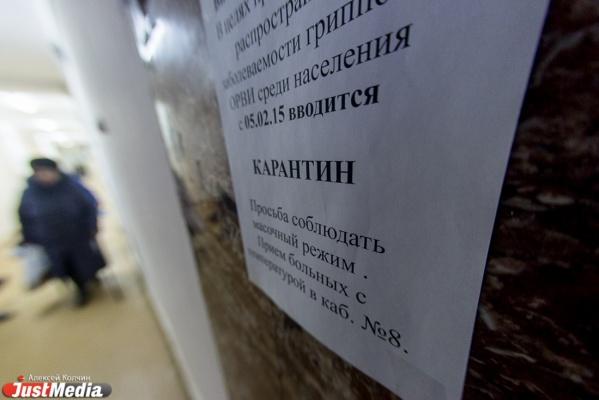 В Свердловской области из-за всплеска заболеваемости гриппом учебные заведения перейдут на особый режим работы