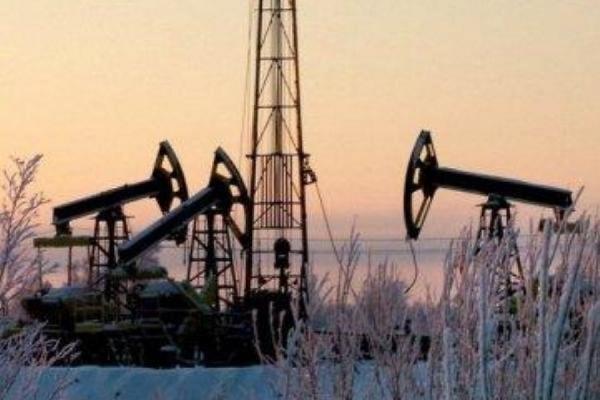 В Госдуме предложили запретить продажу нефти за рубеж