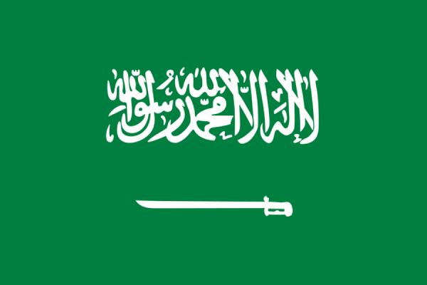 Саудовская Аравия может направить в Сирию несколько тысяч солдат