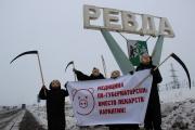 «Вместо лекарств – карантин!» Жители Ревды обвинили Куйвашева в том, что муниципалитет захлестнула эпидемия виного гриппа