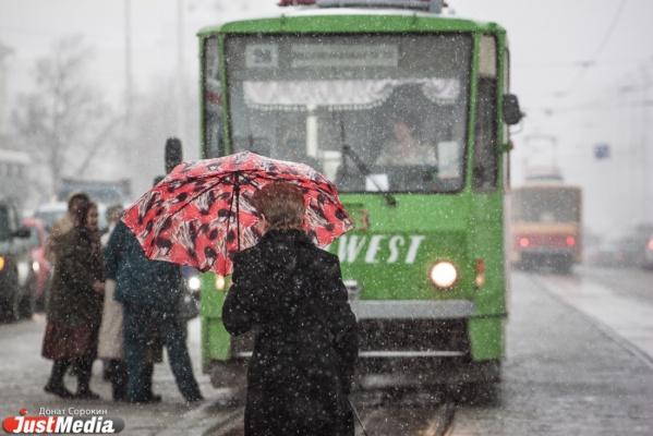 В выходные в Екатеринбурге плюс семь и мокрый снег