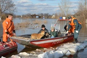 Из затопленных домов в Ирбите эвакуированы 18 человек