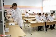 Правительство России дает Свердловской области более 394 млн рублей на школы