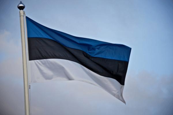 В Эстонии начались совместные с НАТО военные учения «Весенний шторм»