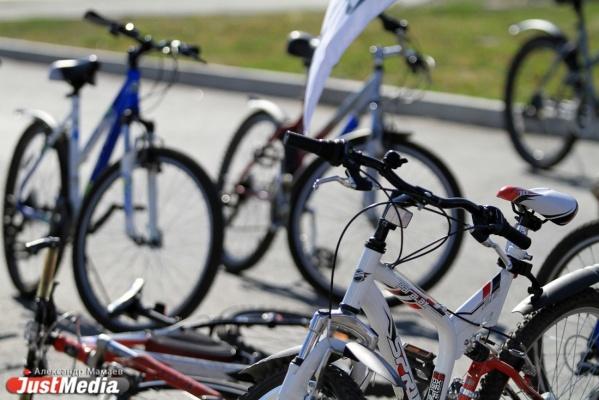 Участники «Майской велопрогулки» поедут на юг