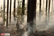 В Екатеринбурге и Каменске-Уральском объявлена высокая пожарная опасность