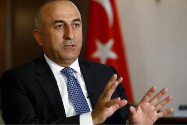 МИД Турции примет меры против резолюции бундестага о геноциде армян