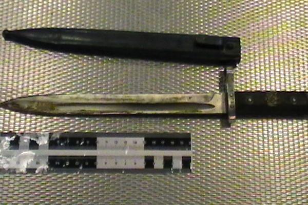 Пограничники Кольцово изъяли упассажира штык-нож 1895
