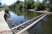 Уткам теперь приходится чаще ходить, чем плавать. В Екатеринбурге почти полностью исчезла главная городская река. ФОТО И ВИДЕО