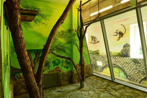 В Екатеринбургском зоопарке отреставрировали павильон обезьян