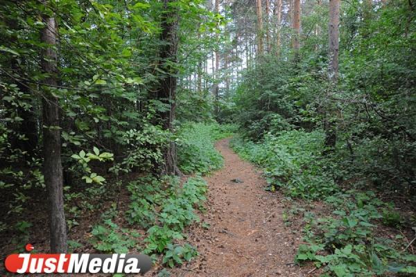 Екатеринбуржцев не пускают в Ботанический сад в связи с угрозой пожара